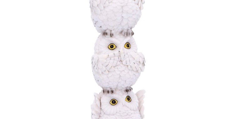 Wisest Owl Totem