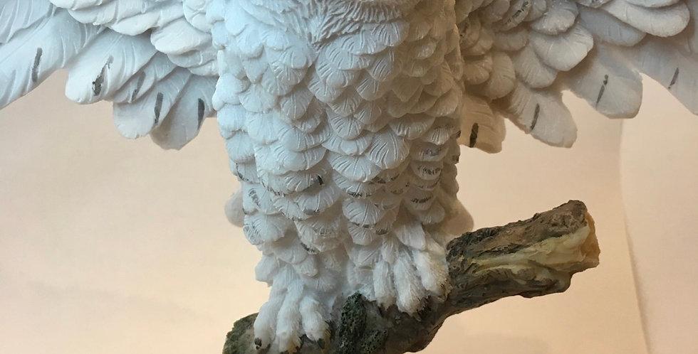 Snowy Owl's Rest