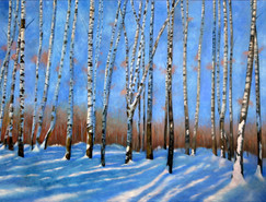 BirchTrees in Snow
