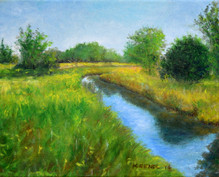 Prairie Path Creek