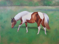 Painted Horse in Field