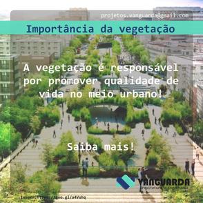Importância da vegetação