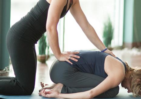 yoga assist.png