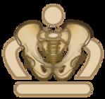 pelvic neutral logo.png