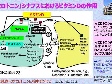 ビタミンDの最適化がセロトニン産生を助ける