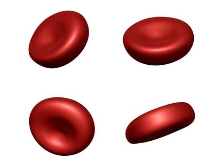 無効造血による「貧血」の3パターン