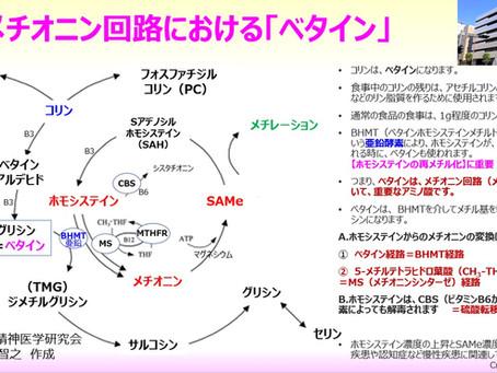 メチオニン回路における「ベタイン」の役割:ホモシステイン濃度の上昇とSAMe濃度の低下・ベタイン経路:BHMT(亜鉛酵素)