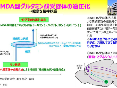 NMDA型グルタミン酸受容体の適正化→健康な精神状態