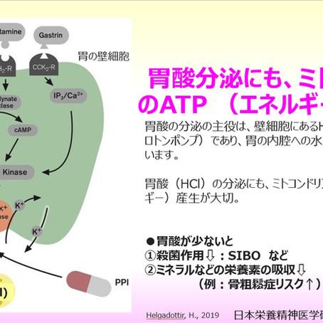 胃酸分泌にも、ミトコンドリアのATP (エネルギー)が必要:胃酸が少ないと、腸の殺菌作用や栄養素の吸収が低下