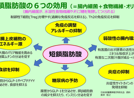 短鎖脂肪酸の6つの効用(=腸内細菌+食物繊維・オリゴ糖)➡過剰免疫や炎症の抑制
