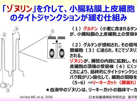 リーキーガット(腸漏れ)症候群とゾヌリンの仕組み