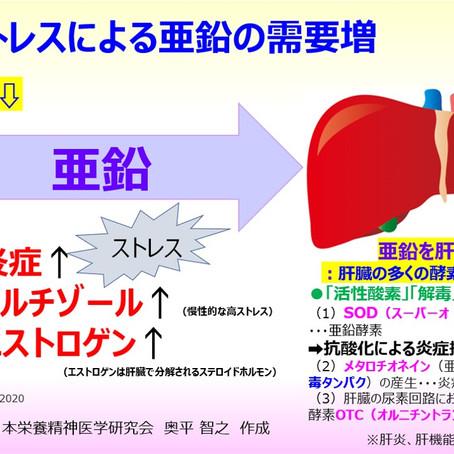 ストレスが多い時は、亜鉛を肝臓に集めてストレス(炎症・酸化)に対処する必要があるため、生体における亜鉛の必要量が増えて、結果、血清亜鉛も低下する