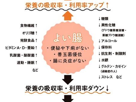 腸管への漢方によるアプローチ