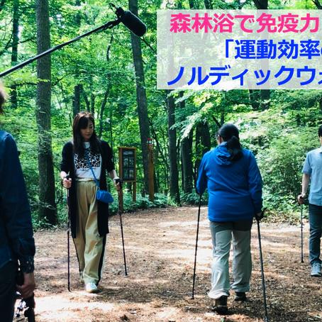 森林浴で免疫力アップ!③運動効率のよいノルディックウォーキング@TV東京ハーフタイムツアーズ