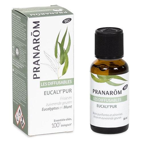 Eucaly'pur mélange pour diffuseur huiles essentielles BIO