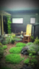 'The Cranny' Garden - Garden Design Project