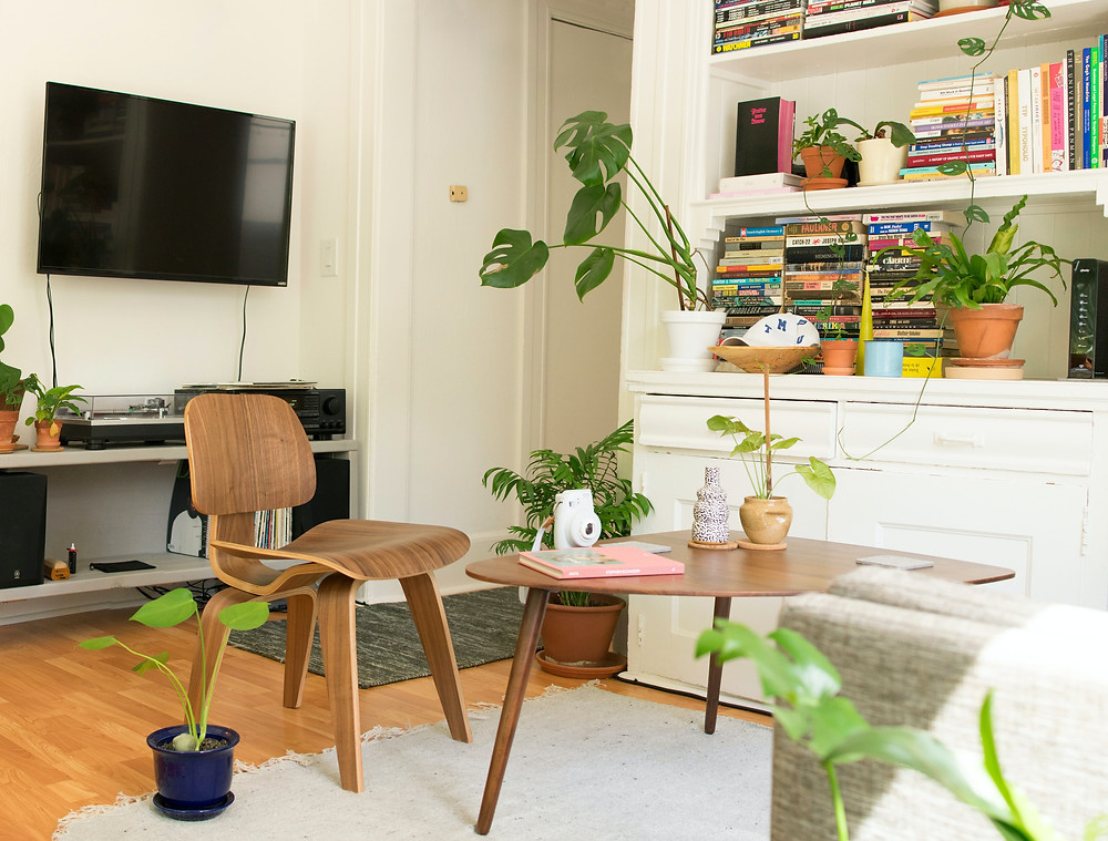 Brightly lit small apartment with plants