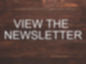View the Newsletter.png