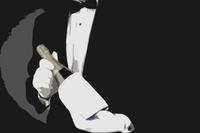 Grand Maître de Champagne Naveau