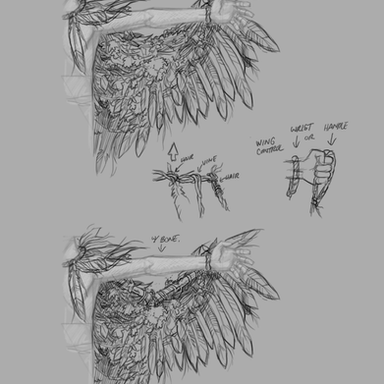 Crypt TV Harclaw Wing Concepts