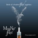 Magna Flux Ad