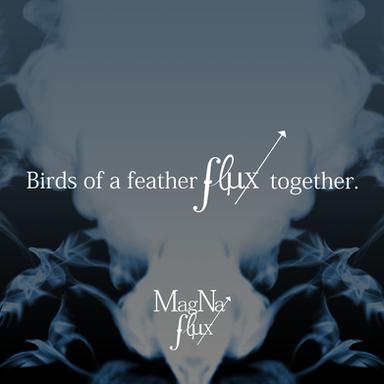 Magna Flux Social Media Design
