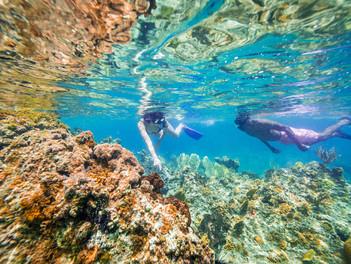 Cinco actividades para disfrutar en Anguilla