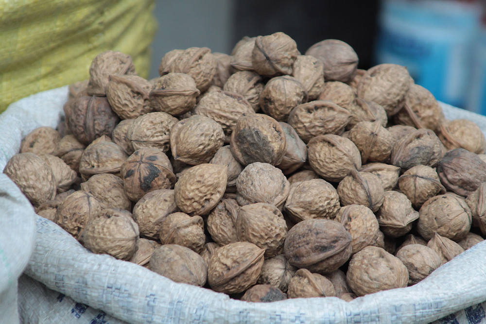Walnuts Nuts Are a Great Source of Many Nutrients