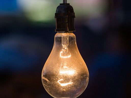 Bulbs aren't just for Christmas, of course! What are your wants/needs throughout the year?