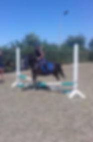 Ponykamp 8915.jpg