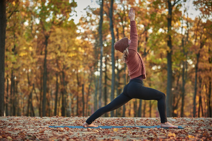 Beautiful young woman practices yoga asa
