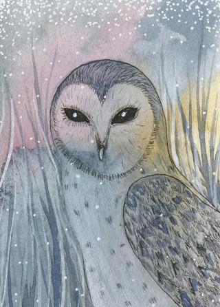 Owl Trade Card 2019 - Copy.jpg