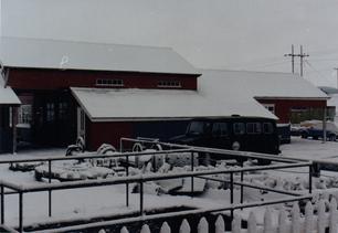 146. Snow.bmp