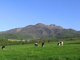 放牧地から八ヶ岳を仰ぐ.JPG