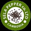 sela_logo_clean.png