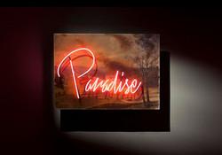 paradise-olivia-steele