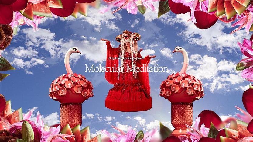 meditacion molecular.jpg