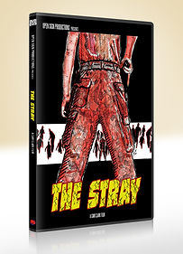 The Stray DVD Mockup V1.jpg