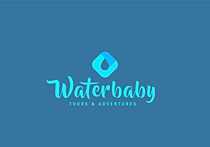 Waterbaby Tours & Adventure logo
