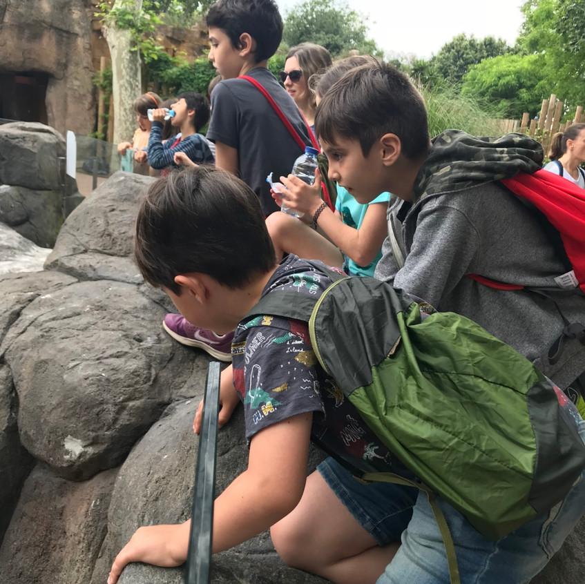 Alumnos en el zoo