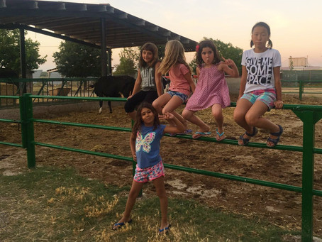 Our West One Summer Campers are having a great time in the country side