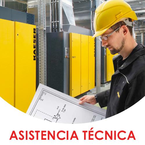 asistencia_técnica