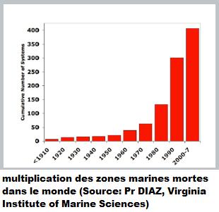 Dynamique des Zones Mortes (VIMS)