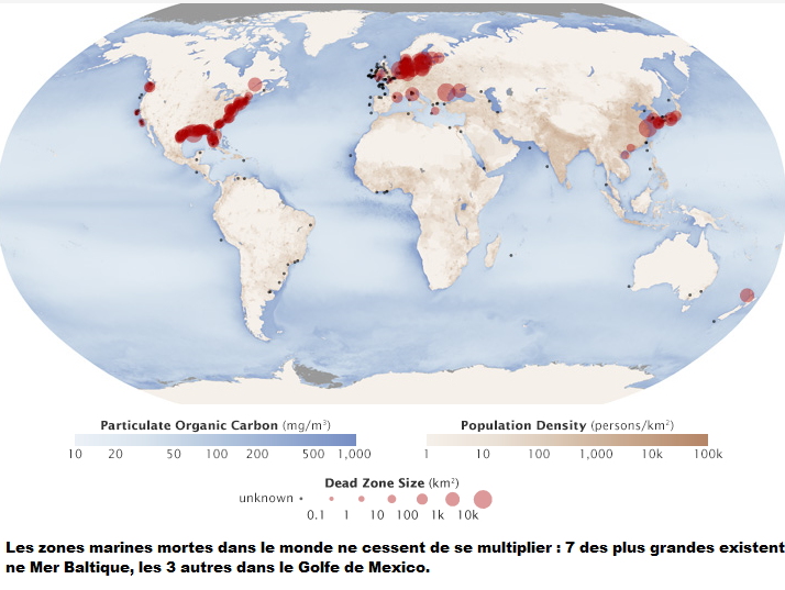 Carte mondiale des zones marines mortes