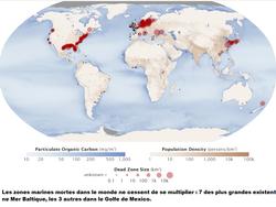 Carte mondiale des zones marines mortes