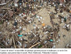 Microbilles plastiques