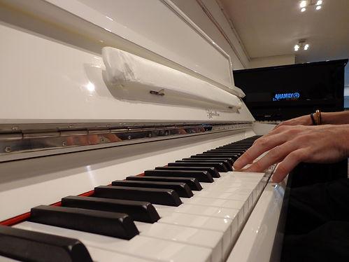 pianiste albaynac musique ritmulle