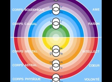 Les 6 corps et les 6 typologies
