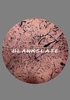 BLANK SLATE poster copy.jpg