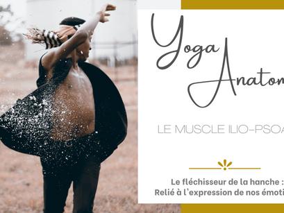 MUSCLE DE L'ÉMOTION : L' ILIO-PSOAS